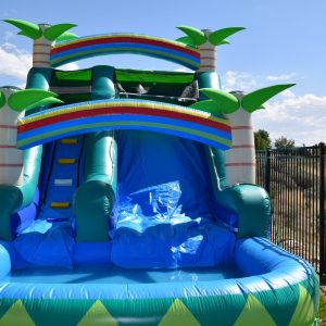 Inflatable Wet or Dry Slides